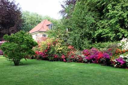 Realizza il tuo giardino su misura gocciaverde livorno pisa - Giardino con rose ...