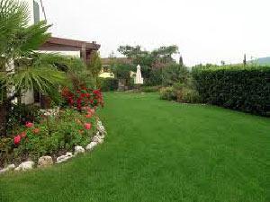 Giardino roccioso livorno pisa soluzioni di giardinaggio - Creare giardino roccioso ...