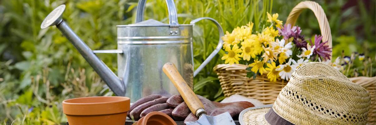 Manutenzione giardini e giardinaggio di Goccia Verde Giardini