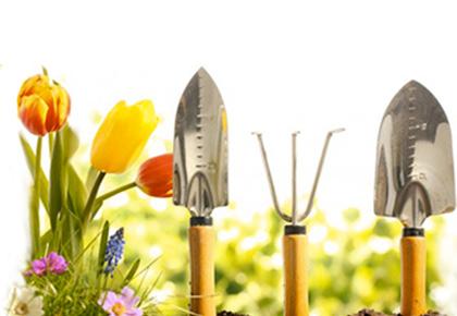 Realizzazione Giardini su misura