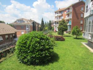 interventi per giardini condominiali