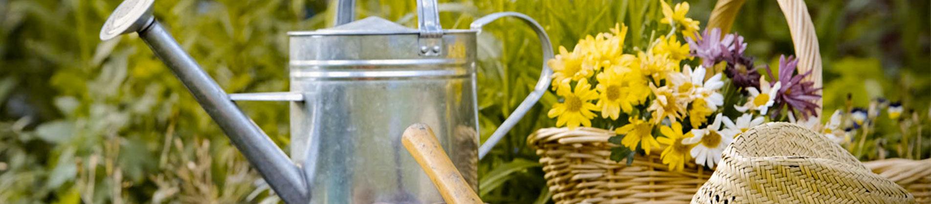 Giardiniere esperto da oltre trentanni